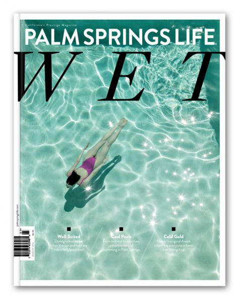 Palm Spring Life Covers
